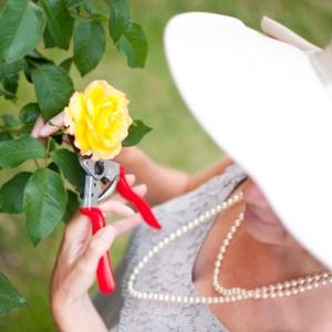rosie gardening 02 smaller