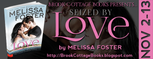Seized by Love Tour Banner