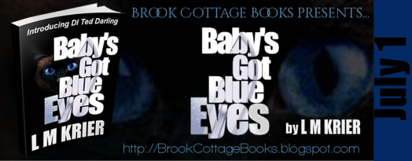 Babys Got Blue Eyes Tour Banner