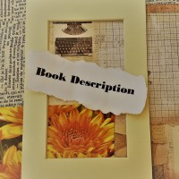 Rosie's #BookReview Of THE DILAPIDATED DETECTIVES by Paul Weinberger