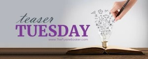 Tuesday Teaser- book meme from @LadyAmbrosia The Intruder by P.S Hogan #TuesdayBookBlog