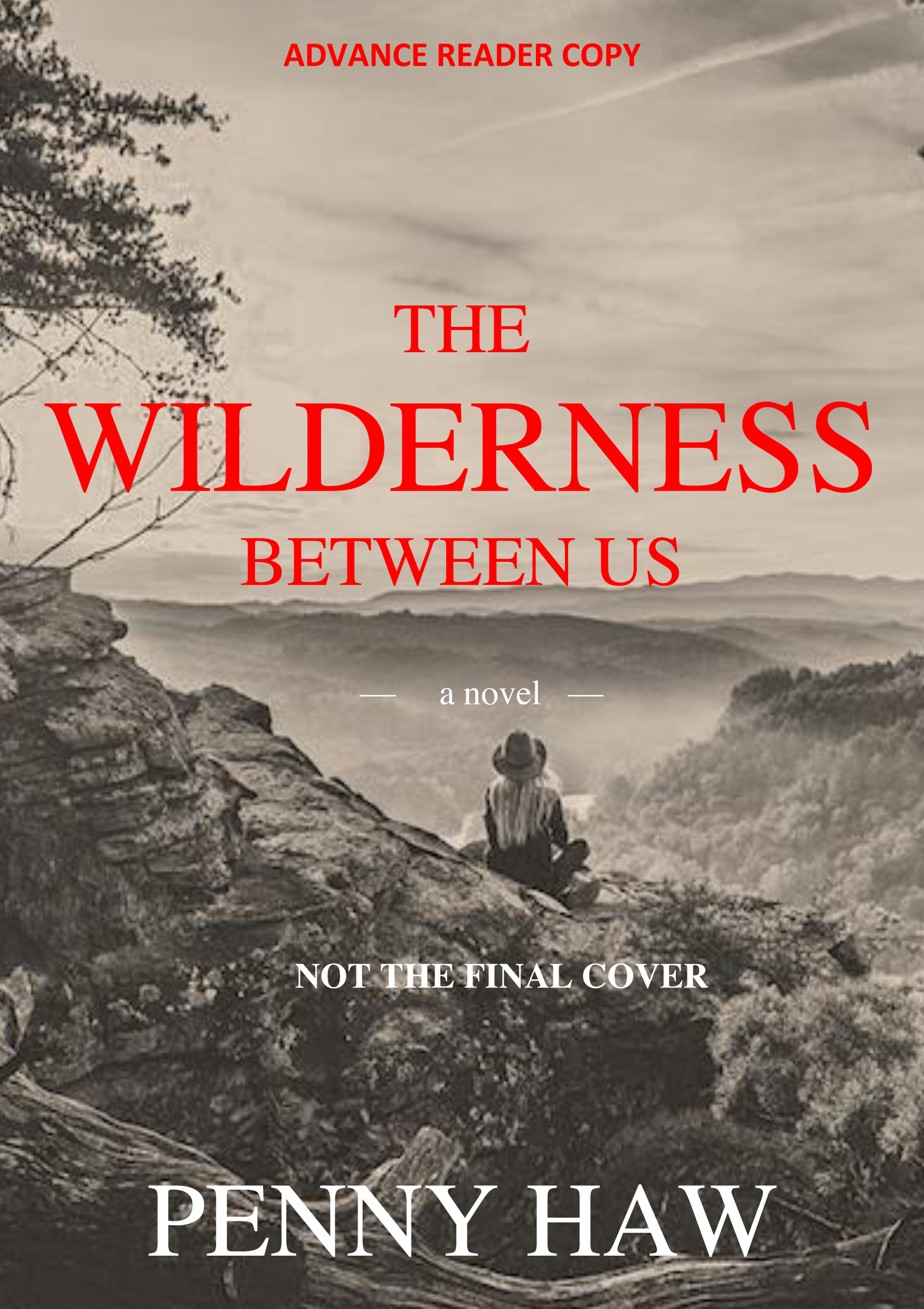 ARC cover The Wilderness Between Us by Penny Haw